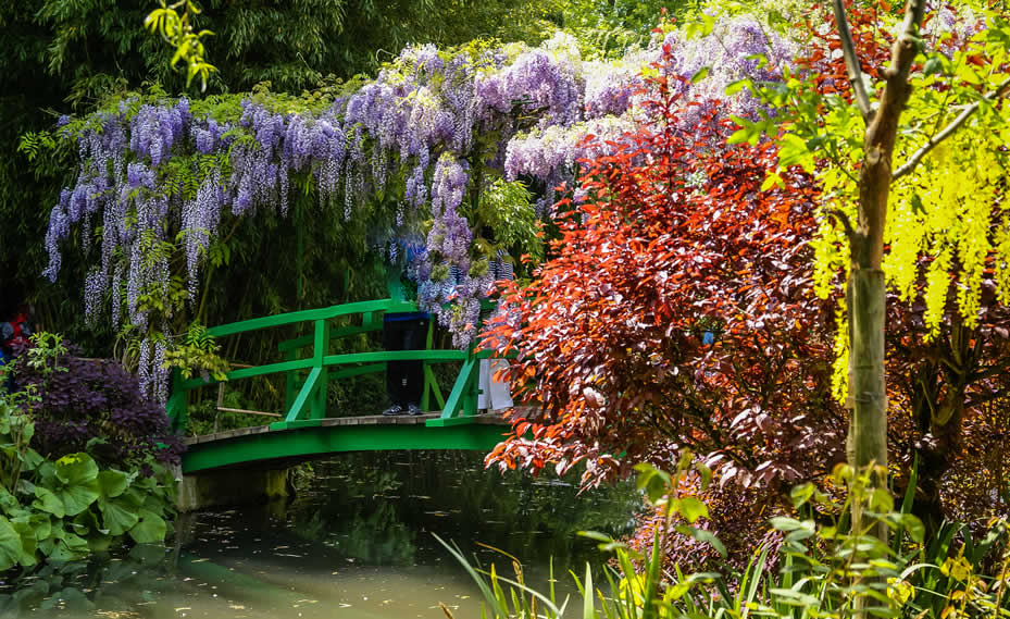 Famous Gardens of France: From Paris to Versailles to Monet's Giverny